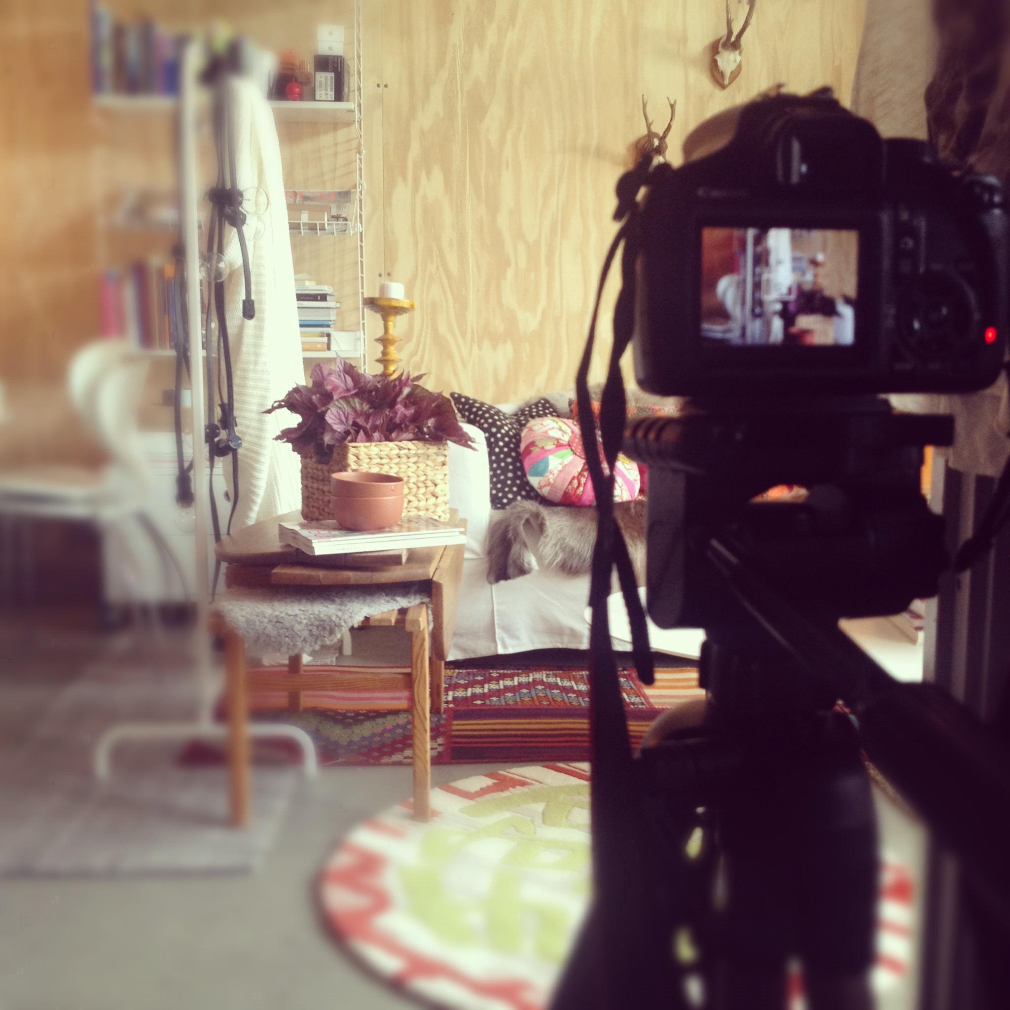 room by sofie studio