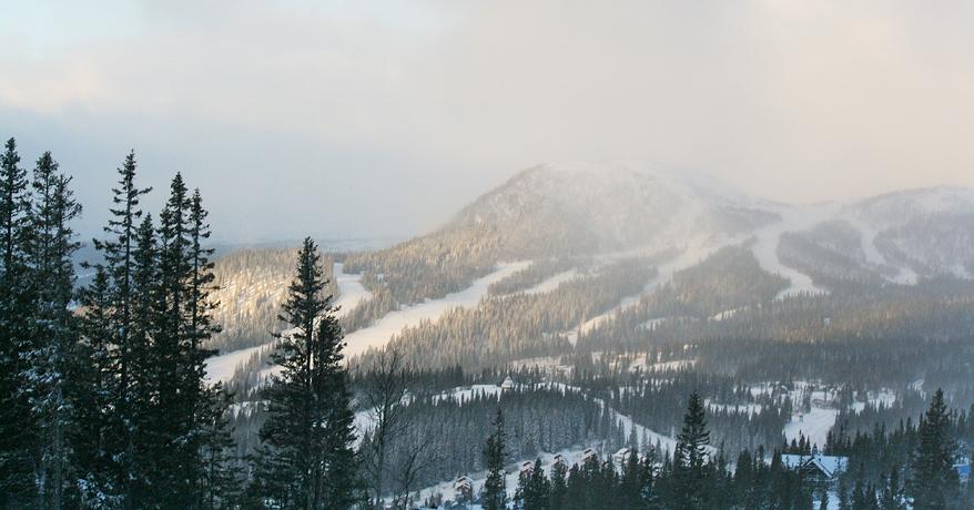 Natur_Åre_skidåkning