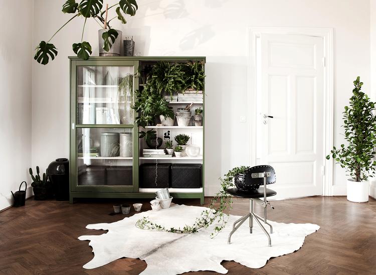 Gröna växter_Femina (1 av 1)