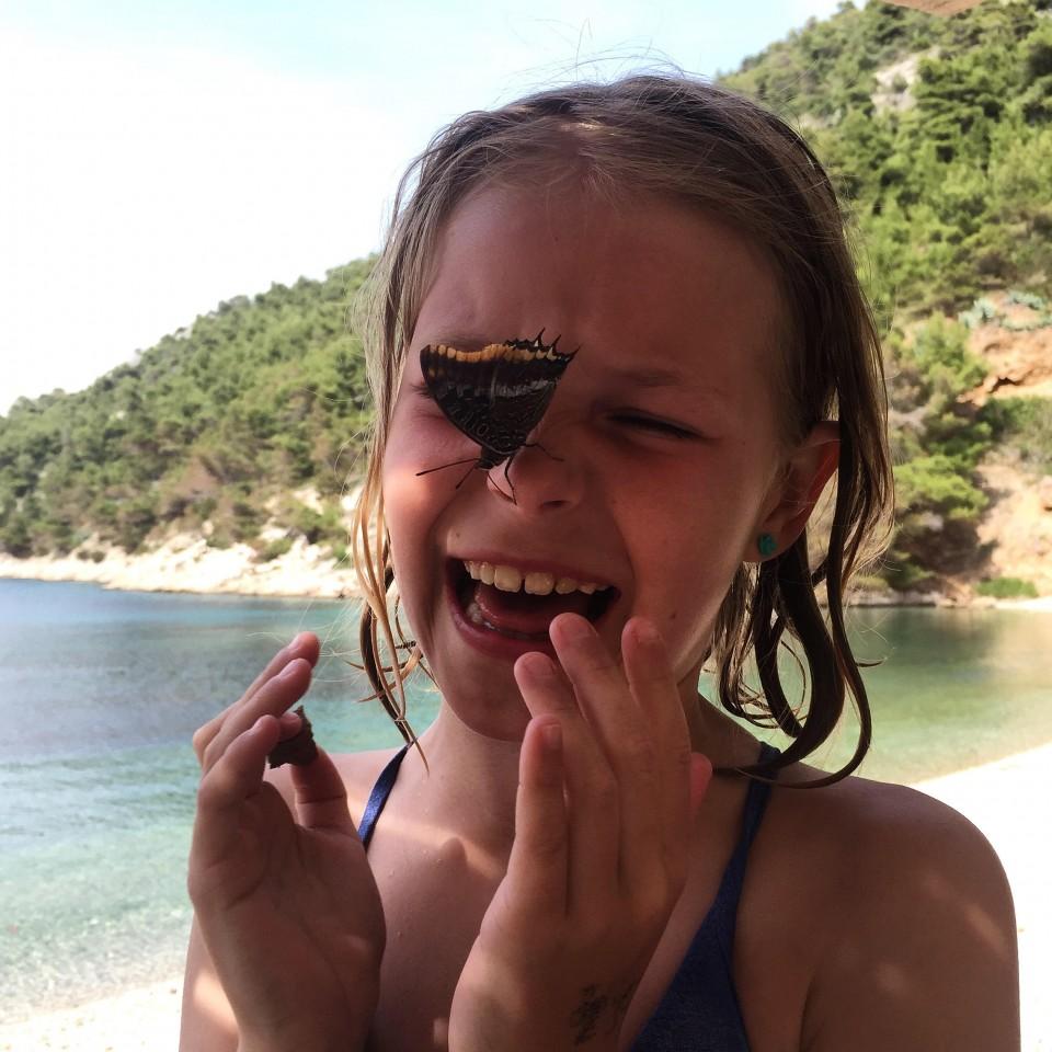 Ebba_fjäril_butterfly_kroatien